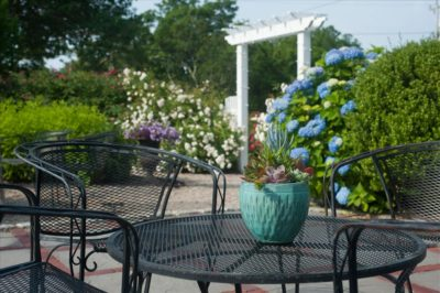 Pretty pergola and chairs on the patio patio