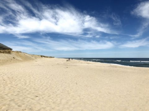 cape cod beach vacation
