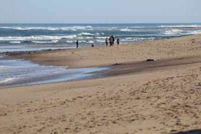 A family enjoys a quiet bech walk on Nauset Beach
