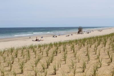 Nauset Beach in summer with lots of space for sunbathing, beach games, and swimming