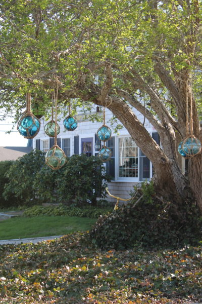 Colorful glass globes hang from our tree