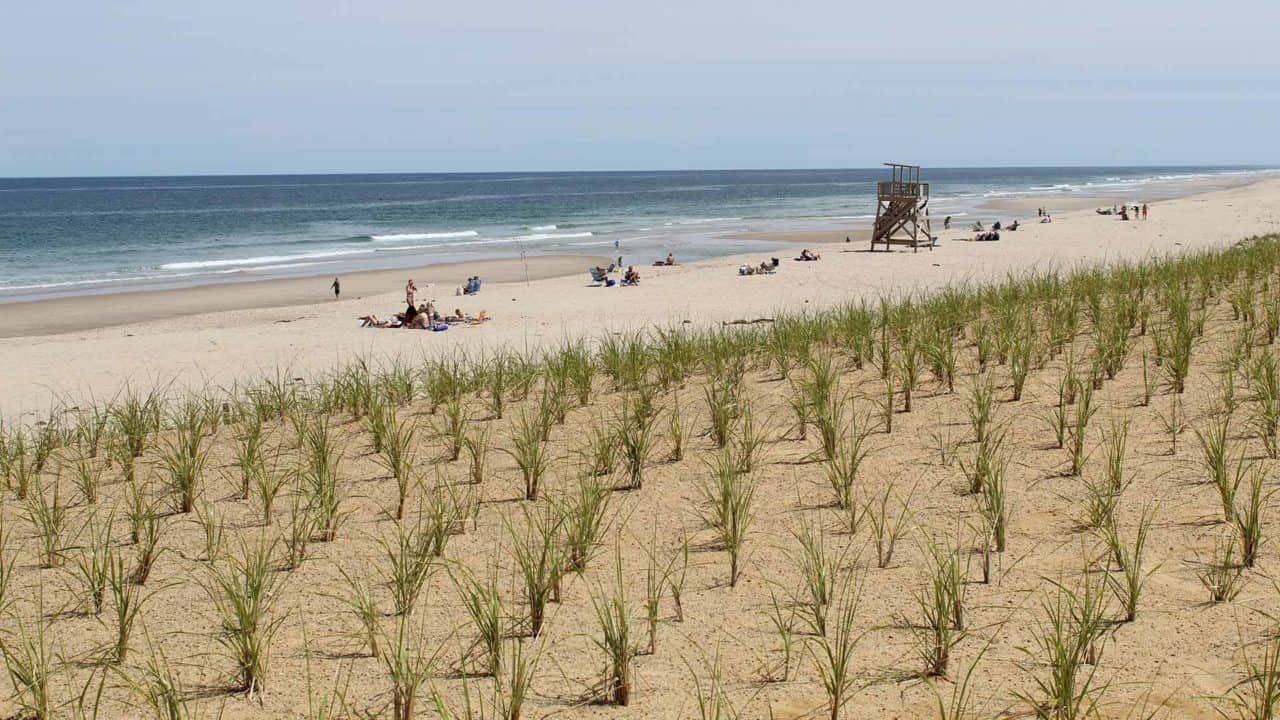 Nauset Beach on a beautiful warm summers day with groups sunbathing and swimming